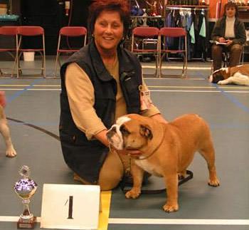 Dog Show Judges From Netherlands